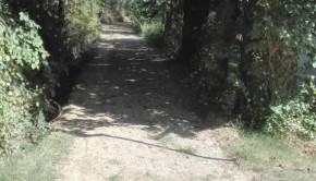 sentieri e percorsi pedonali per camminare a Corinaldo
